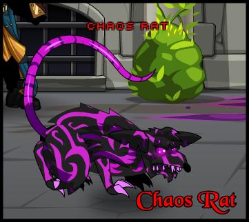 Chaos Rat